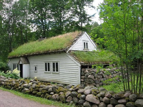 Build a green roof