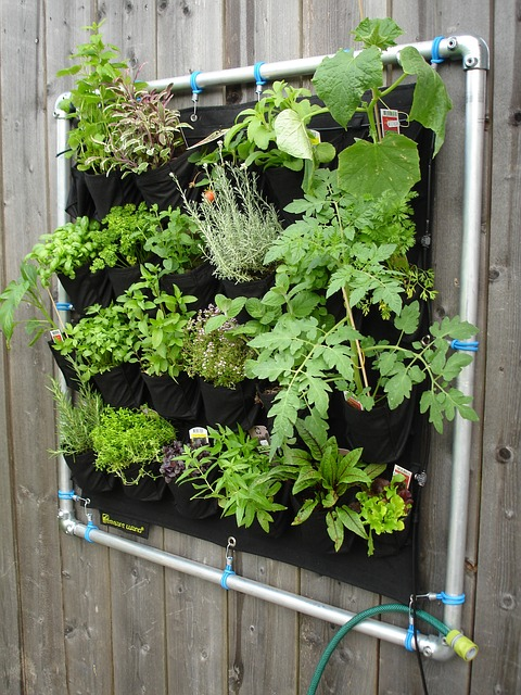 Small vertical garden, mounted to the fence