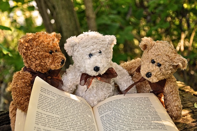 Bears reading a book